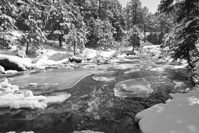 Moisture ladened spring snow graces our streams and wells.